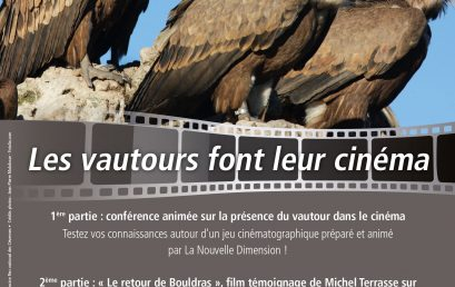 Les vautours font leur cinéma